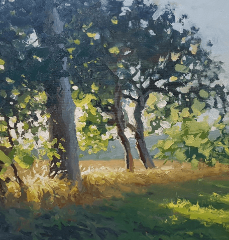 Painting of three trees at the edge of a field by artist Jenny Aitken.